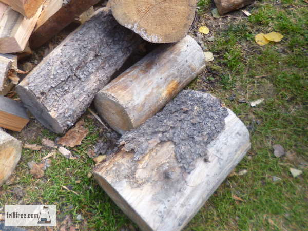 Best Wood For Heating Your Home Choose Your Favorite