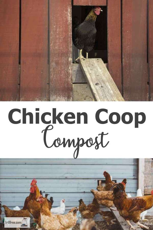 Chicken Coop Compost