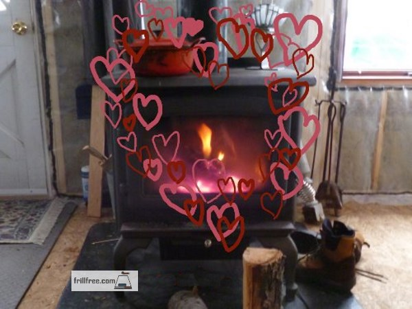 Why not use the heat from the woodstove to cook your meals?