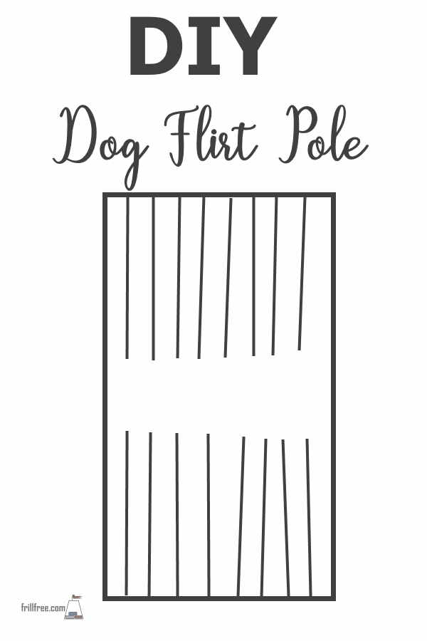 DIY Dog Flirt Pole