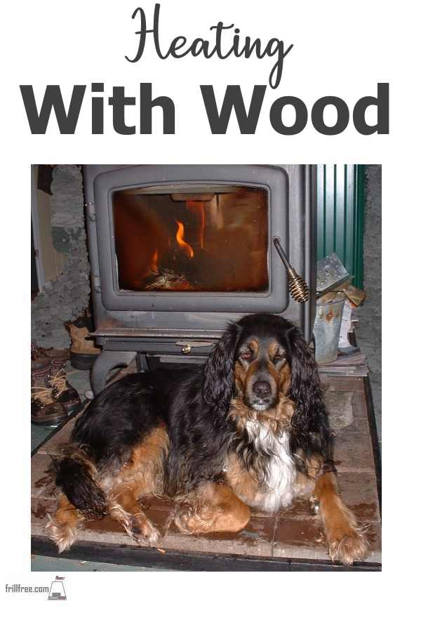 Bracken in front of the fire warming up...