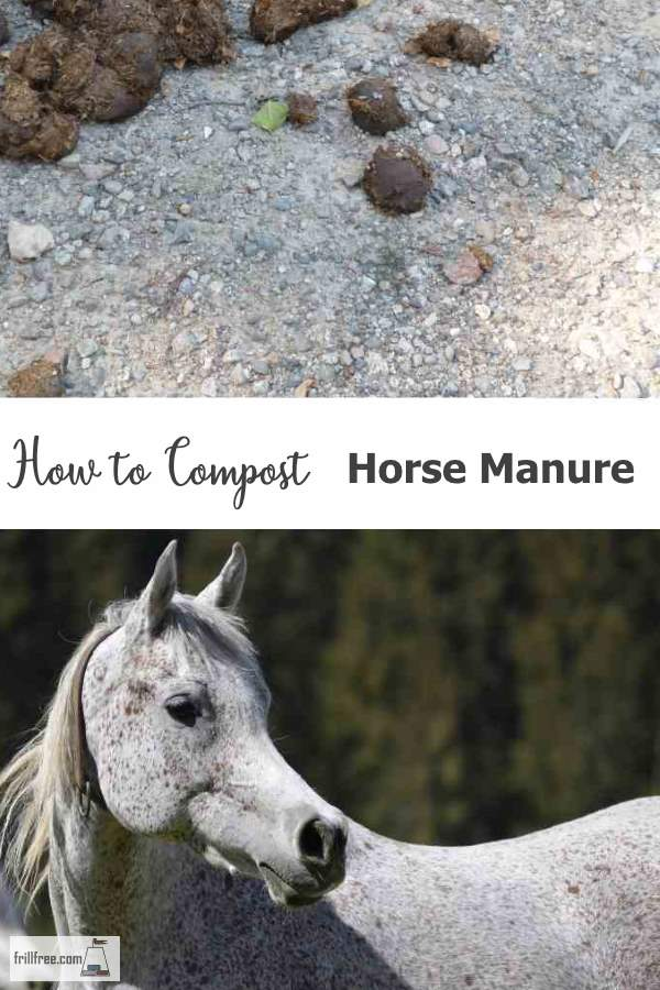 How to Compost Horse Manure