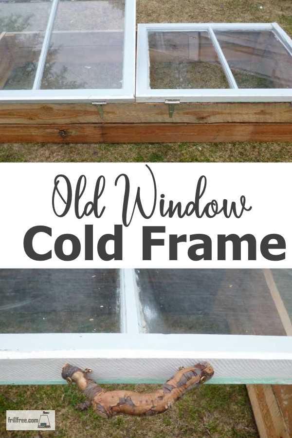 Old Window Cold Frame