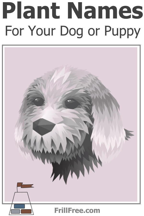 Plant Names for Your Dog or Puppy
