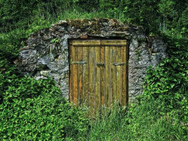 Rugged Stone and Rustic Root Cellar