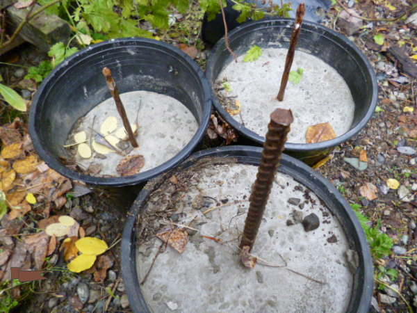 Cement in pots with rebar or spikes