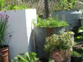 Recycling in the Garden
