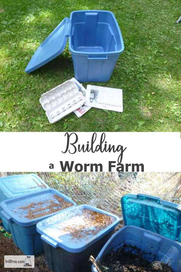 Building a Worm Farm