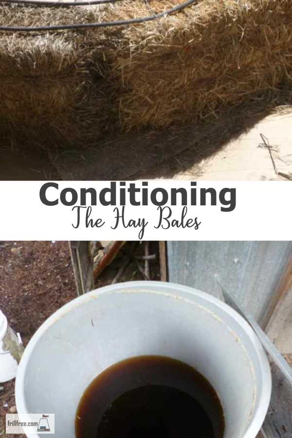 Conditioning the Hay Bales