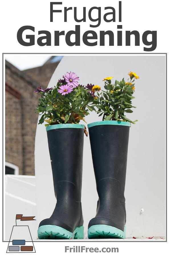 Frugal Gardening using old boots for planters