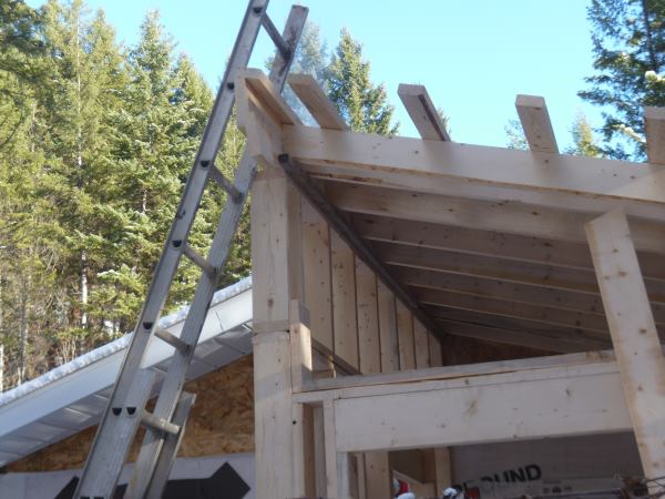 Roof rafters and strapping