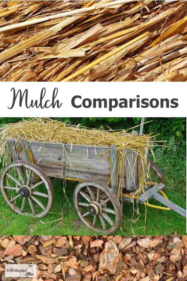 Mulch Comparisons